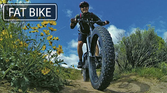 FAT BIKE1.jpg (102 KB)